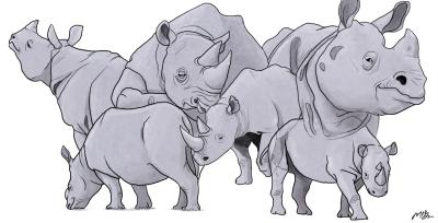 Six Rhinos